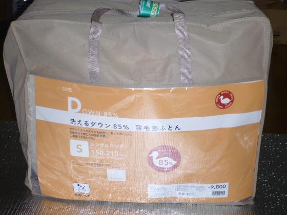 DPP_7654.JPG